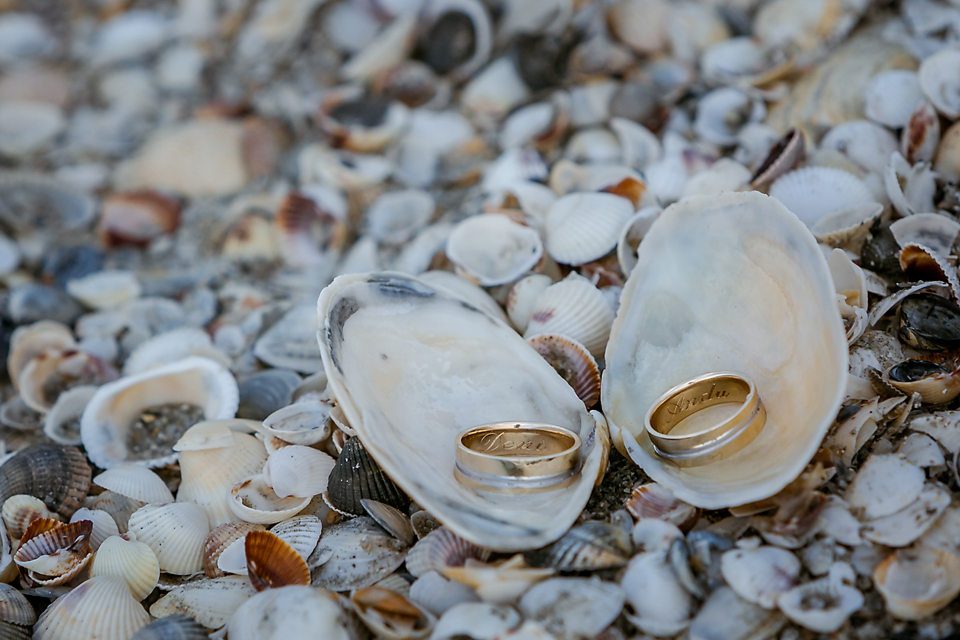Wedding Rings Photo Details France